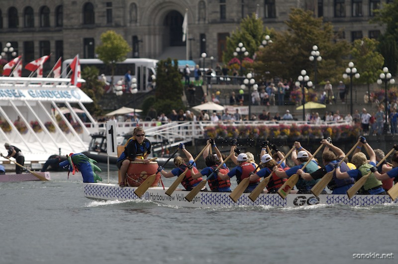 row row row yer boat