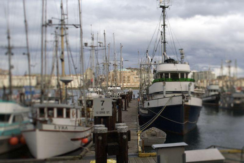 tilted wharf