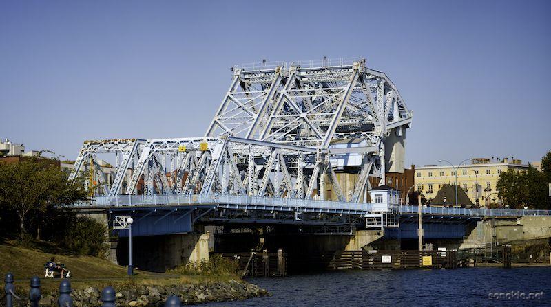 in memory of the bridge