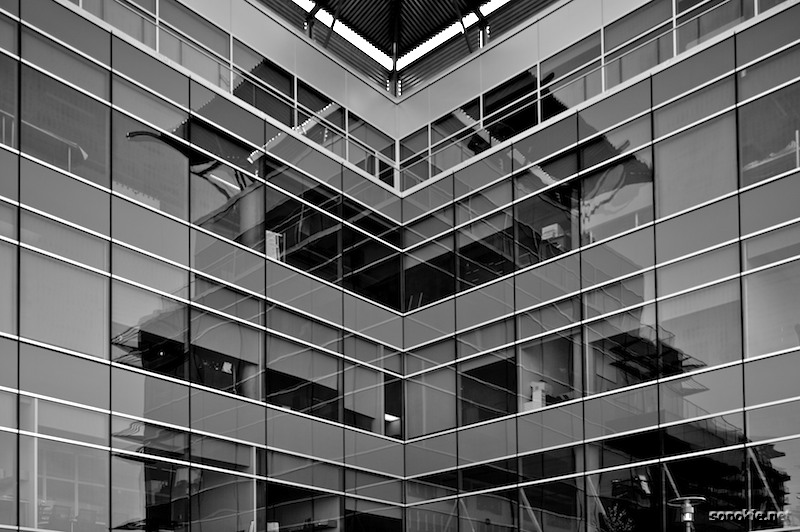 reflected lines