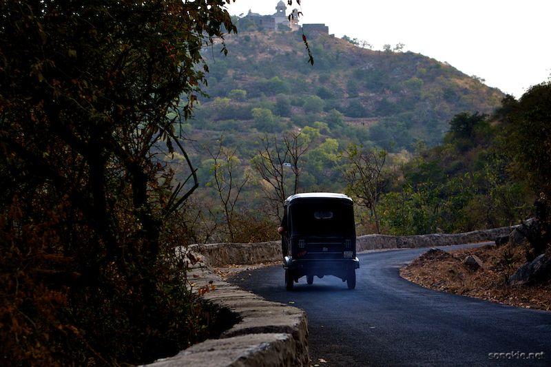 monsoon palace rickshaw