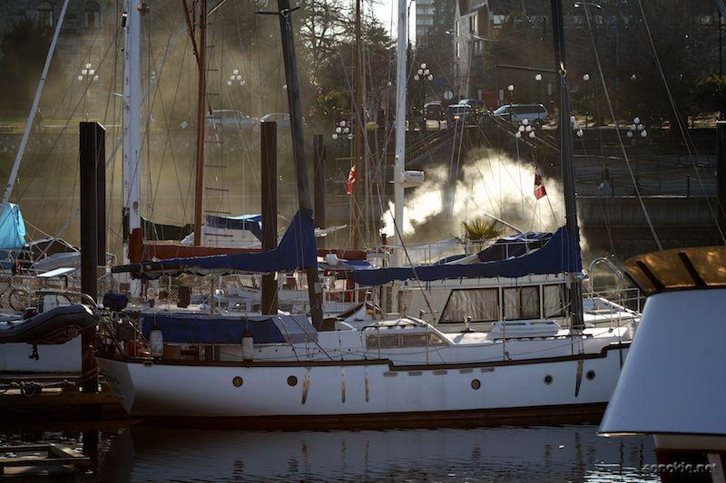 smoky boats